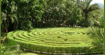 Hedge Maze1280px-Jaraguá_do_Sul_951 -Jaraguá do Sul 951 by Herr stahlhoefer -