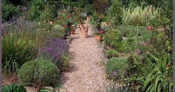 Herb_garden_at_Dyffryn_Fernant_-_geograph.org.ukceridwen